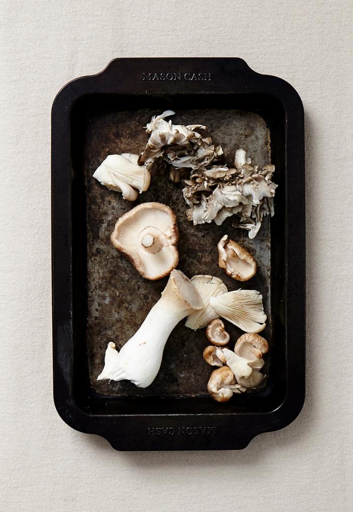 Zodiac_Scorpio_Mushroom_33_5