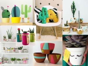 Cactus Crafts, Essentials